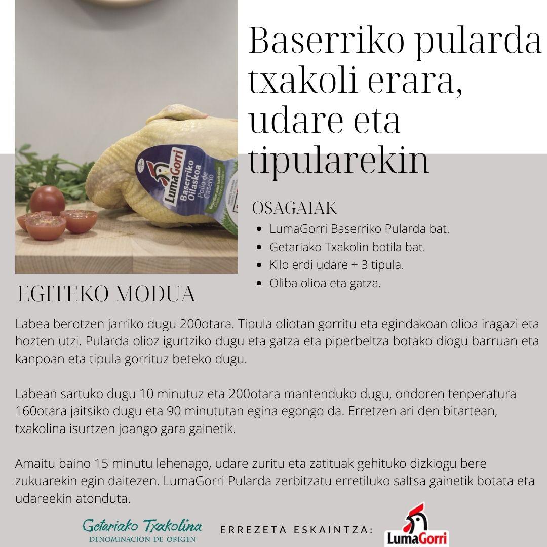 BASERRIKO PULARDA TXAKOLI ERARA UDARE ETA TIPULAREKIN